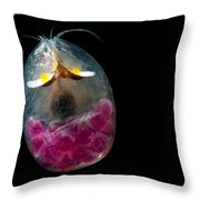 Giant Ostracod Throw Pillow