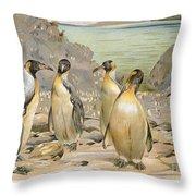 Giant Penguins, C1900 Throw Pillow