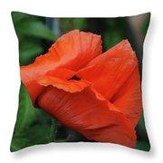 Giant Poppy-2 Throw Pillow