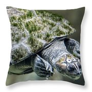 Giant River Turtle Throw Pillow