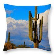 Giant Saguaro In The Southwest Desert  Throw Pillow