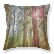 Giant Sequoias Throw Pillow