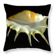 Giant Spider Conch Seashell Lambis Truncata Throw Pillow