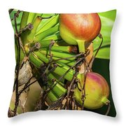 Giant Spider Lily - After The Flowers Are Gone Throw Pillow