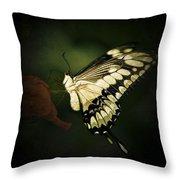 Giant Swallowtail 2 Throw Pillow