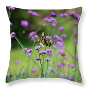 Giant Swallowtail Butterfly In Purple Field Throw Pillow
