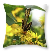 Giant Swallowtail Wings Folded Throw Pillow
