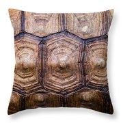 Giant Tortoise Carapace Throw Pillow