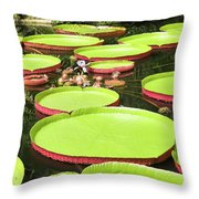 Giant Water Lily Platters Throw Pillow