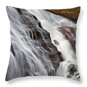 Gibbon Falls Throw Pillow