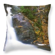 Gibbs Falls Presidential Range Throw Pillow