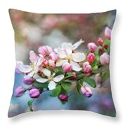 Gift From Heaven Throw Pillow