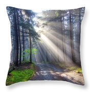 Gift Of Light Throw Pillow
