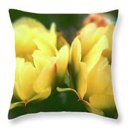 Gift Of The Cacti Throw Pillow