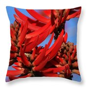 Gift Of Zimbabwe Throw Pillow by Linda Shafer
