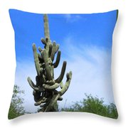 Gigantea Saguaro Old And Strong Throw Pillow