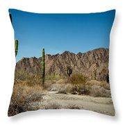 Gila Mountains And Sonoran Desert Throw Pillow