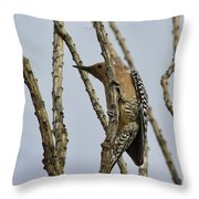 Gila Woodpecker Throw Pillow
