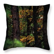 Gilded Visions Throw Pillow