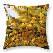 Ginestre Throw Pillow