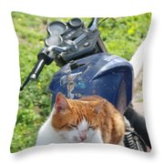 Ginger And White Tabby Cat Sunbathing On A Motorcycle Throw Pillow