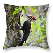 Ginger In The Bayou Throw Pillow