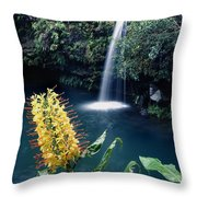 100638-ginger Lily And Hawaiian Waterfall  Throw Pillow