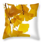 Ginkgo Ginkgo Biloba Leaves In Autumn Throw Pillow