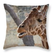 Girafe Head About To Grab Food Throw Pillow