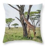 Giraffe 2 Throw Pillow