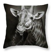 Giraffe Eating Throw Pillow by Johan Swanepoel