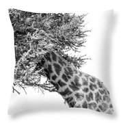 Giraffe Hide And Seek Throw Pillow