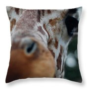 Giraffe Nose Throw Pillow