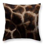 Giraffe Patterns  Throw Pillow