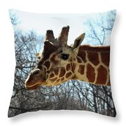 Giraffe Stretching For A View Throw Pillow