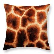 Giraffe Texture Throw Pillow