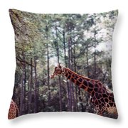 Giraffesgalore Throw Pillow