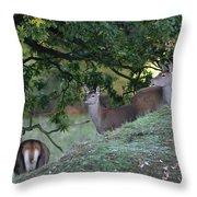 Girls On A Hill Throw Pillow