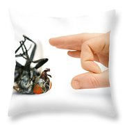 Give Pests The Flick Throw Pillow