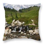 Glacial Runoff Throw Pillow