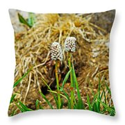 Glacial Wildflowers Throw Pillow
