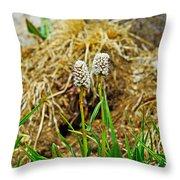 Glacial Wildflowers Throw Pillow