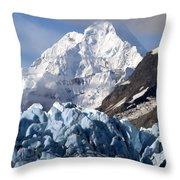 Glacier Bay Alaska Photograph Throw Pillow