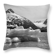 Glacier Bw Porter Alaska Throw Pillow