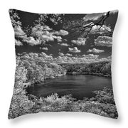 Glacier Lake Throw Pillow