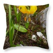 Glacier Lily 1 Throw Pillow