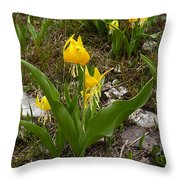Glacier Lily 3 Throw Pillow