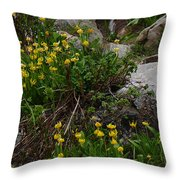 Glacier Lily 4 Throw Pillow