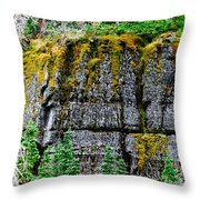 Glacier Np Moss Throw Pillow
