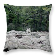 Glacier Rock 2 Throw Pillow